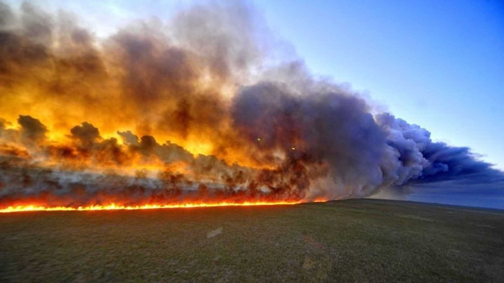 25_amazonas-en-incendio_21-08-2019